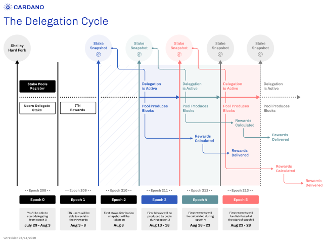 delegation_cycle